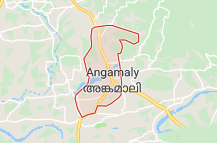 Angamally Offers Coupon Promo