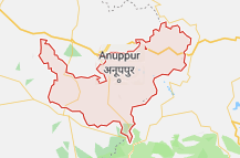 Anuppur Offers Coupon Promo
