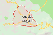 Gudalur Offers Coupon Promo