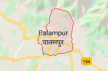 Palampur Offers Coupon Promo