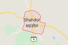 Shahdol Offers Coupon Promo